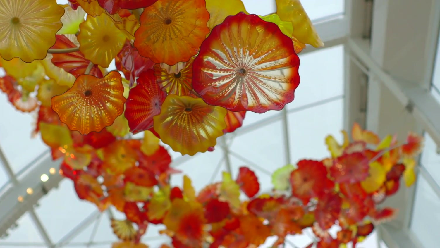 The Future of Aesthetics with Dale Chihuly