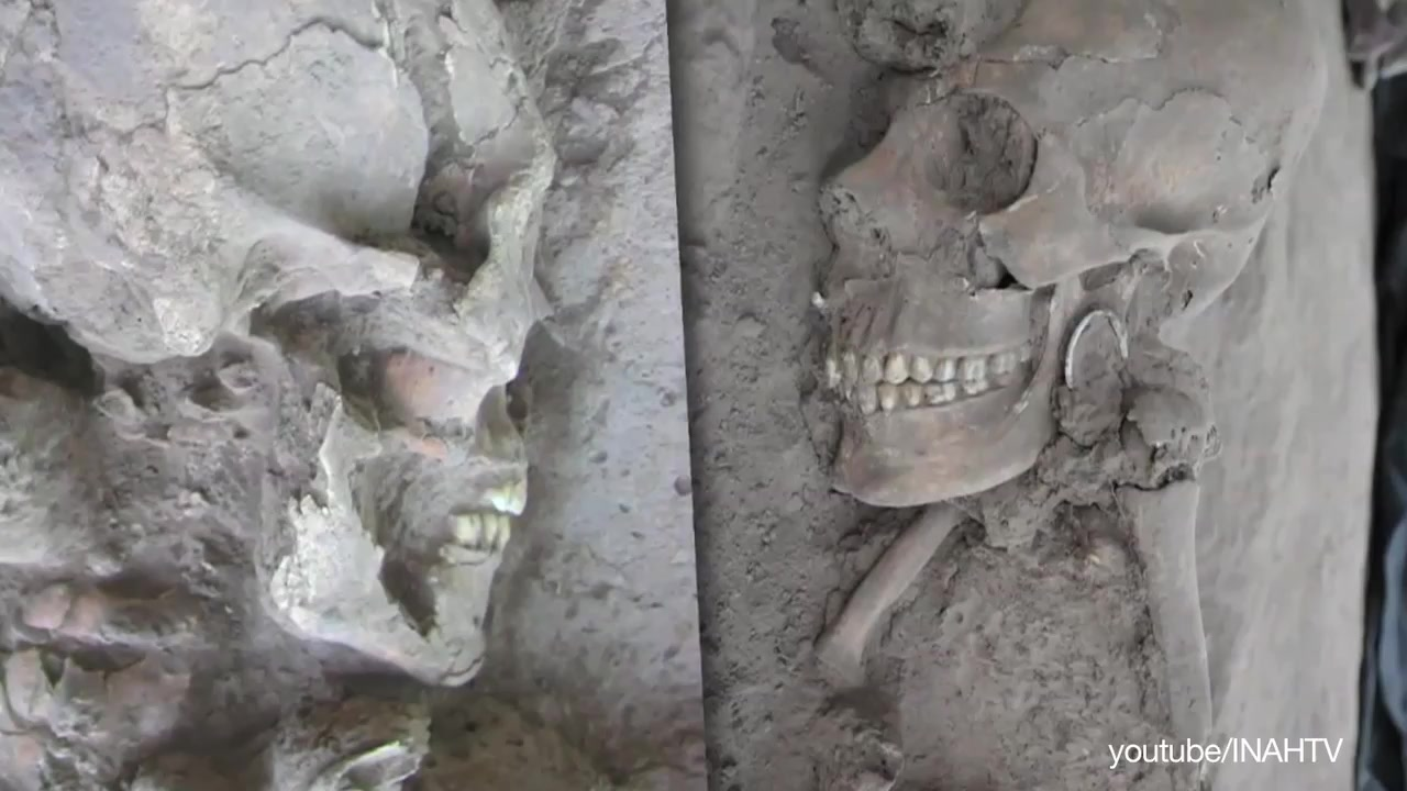 Alien-Like Skulls Found in Mexico
