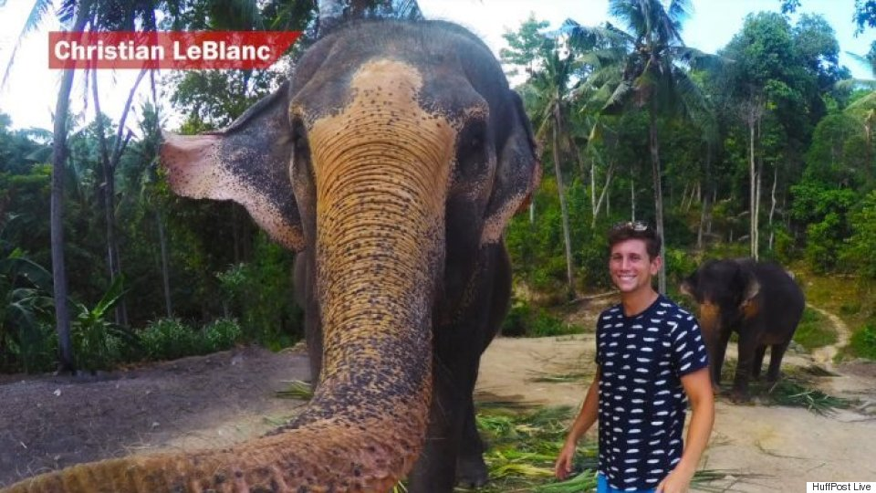 How This Man Scored An 'Elphie,' Or Elephant Selfie