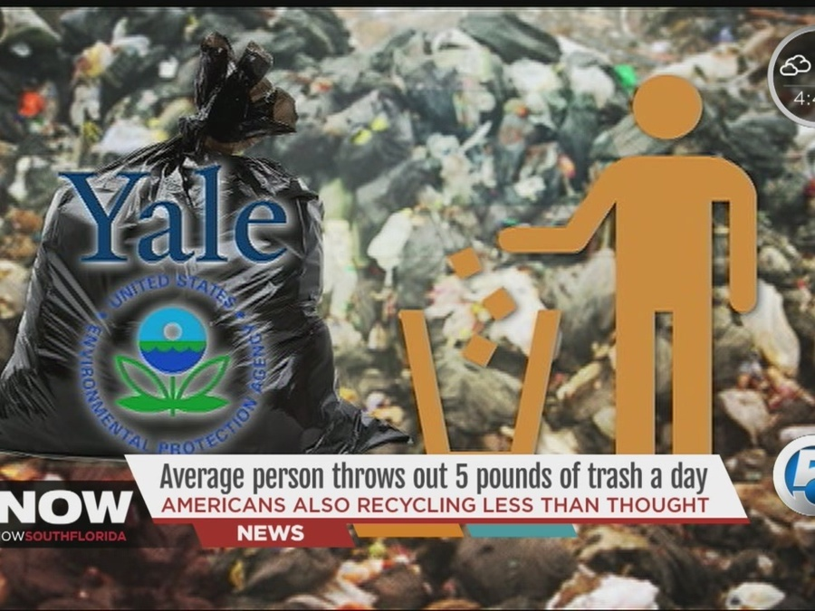 Average Person Throws Out 5 Pounds of Trash a Day