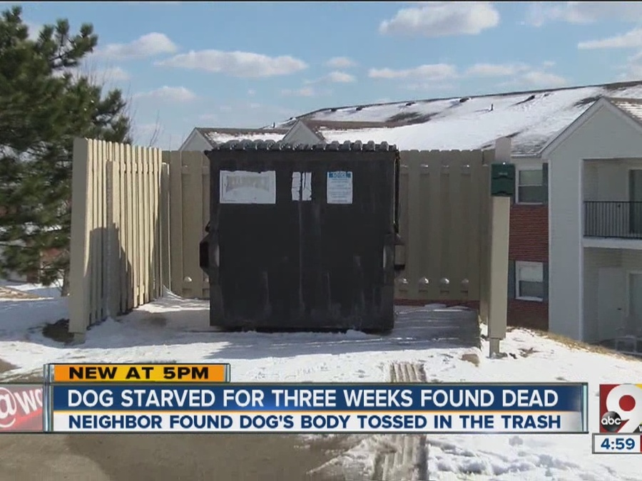 Pet Dog Starved to Death in Cage, Thrown In Dumpster, Sheriff Says