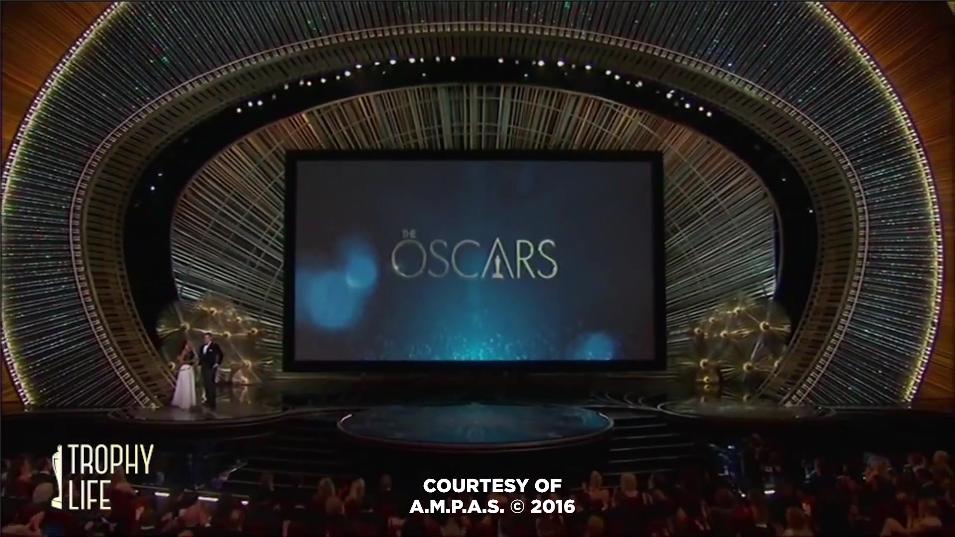 2016 Oscars Winners Recap