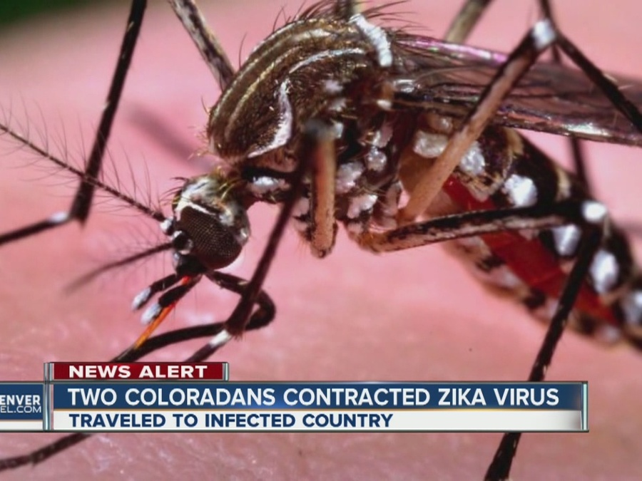 2 Coloradans Contracted Zika Virus