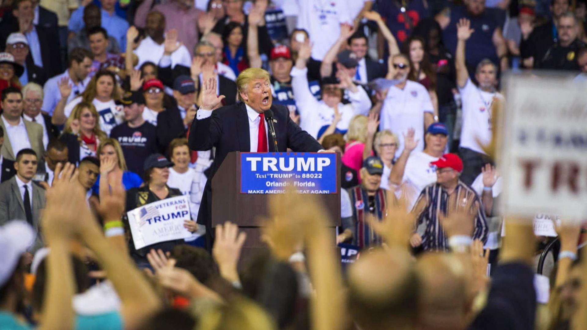 Donald Trump: Comparisons of Pledge to Nazi Salute 'Ridiculous'