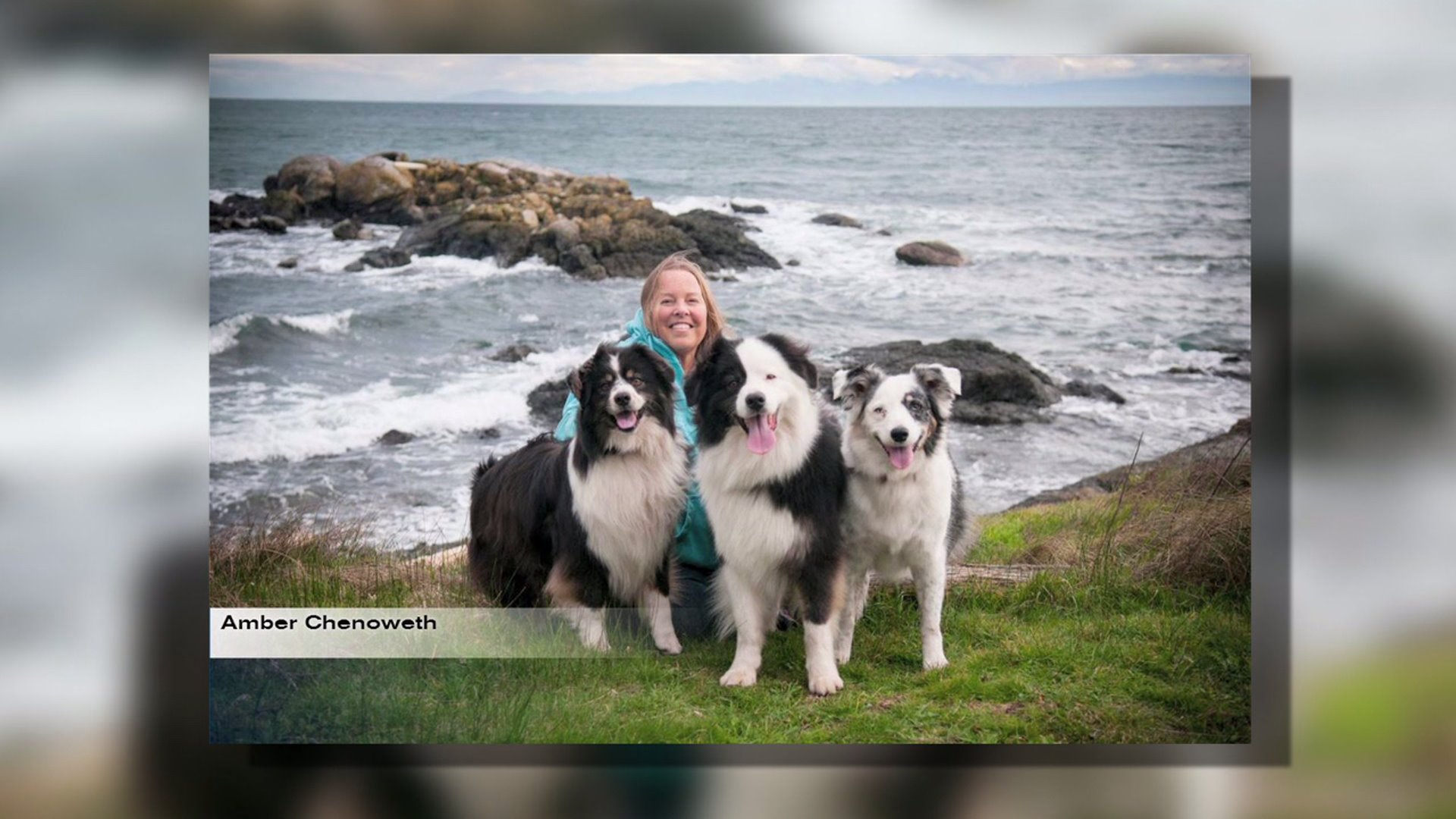 Dying Woman Turns to Facebook to Find New Home for Beloved Dogs