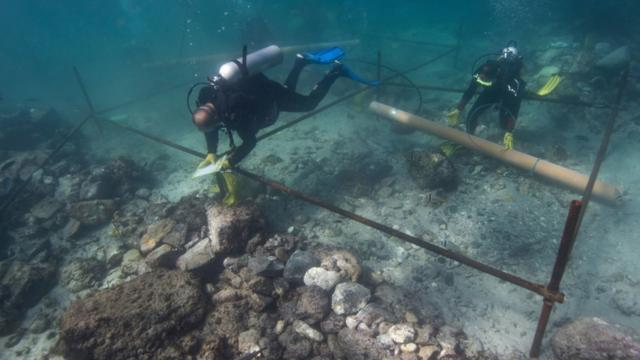 Researchers Excavate Downed Ship Believed To Be From Vasco Da Gama's Fleet