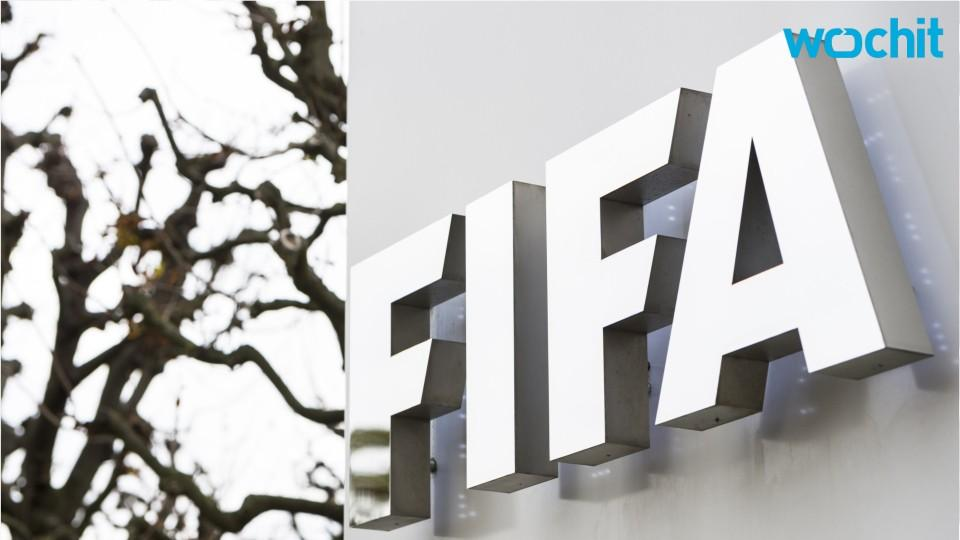 FIFA Watchdog Opens Ethics Investigation Into 2006 World Cup
