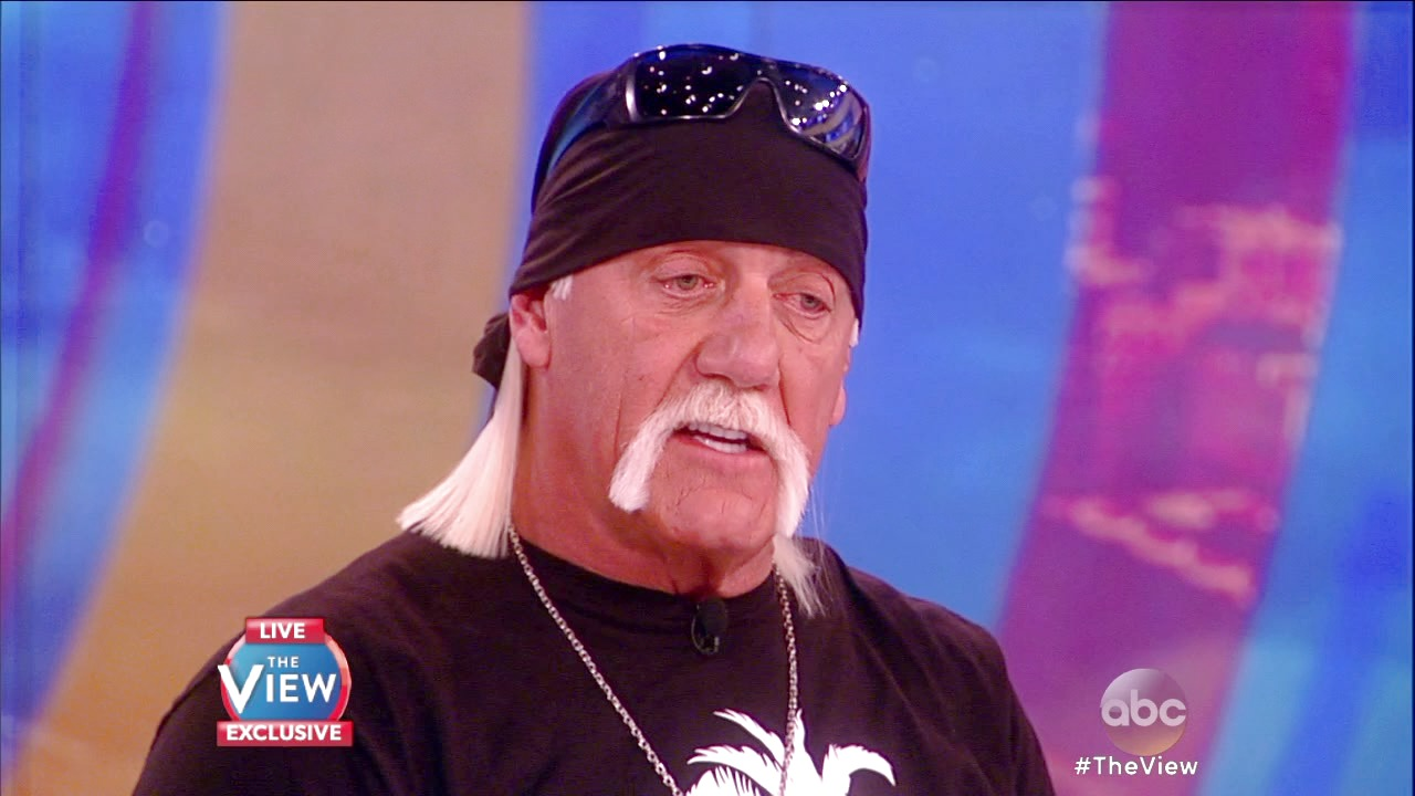 'The View': Hulk Hogan Says Gawker Is 'The Ultimate Bully' in Exclusive Sit-Down on 'The View'