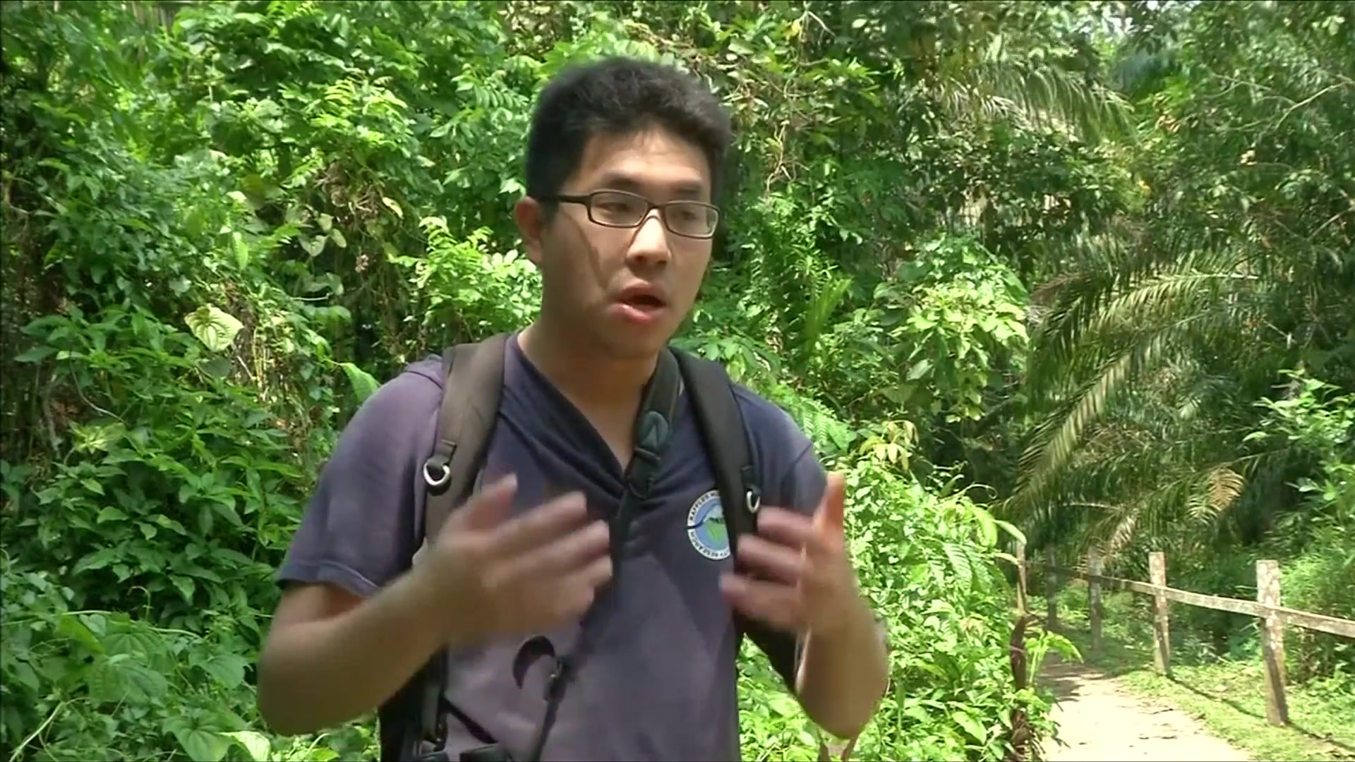 Activists Oppose Tunnel Under Singapore Forest