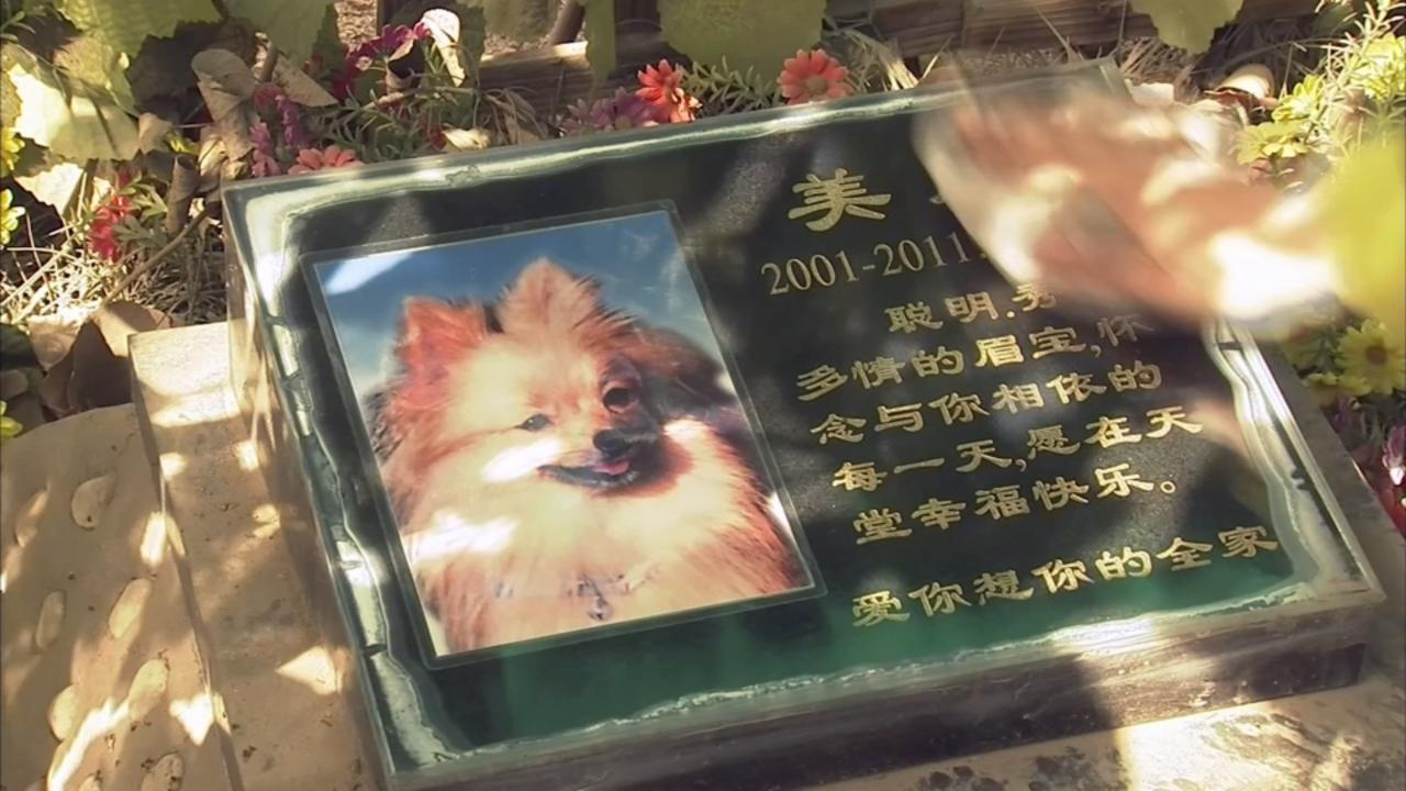 Chinese sweep pets' tombs in Beijing