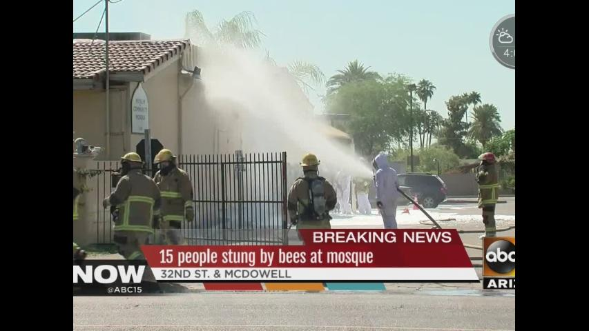 15 people stung by bees at mosque