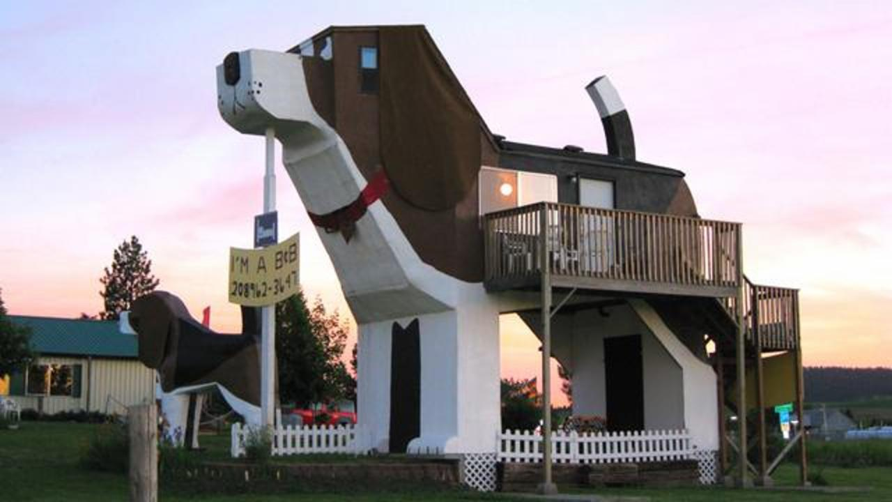 A Tall Dog-Shaped Structure Serves Surprising Purpose