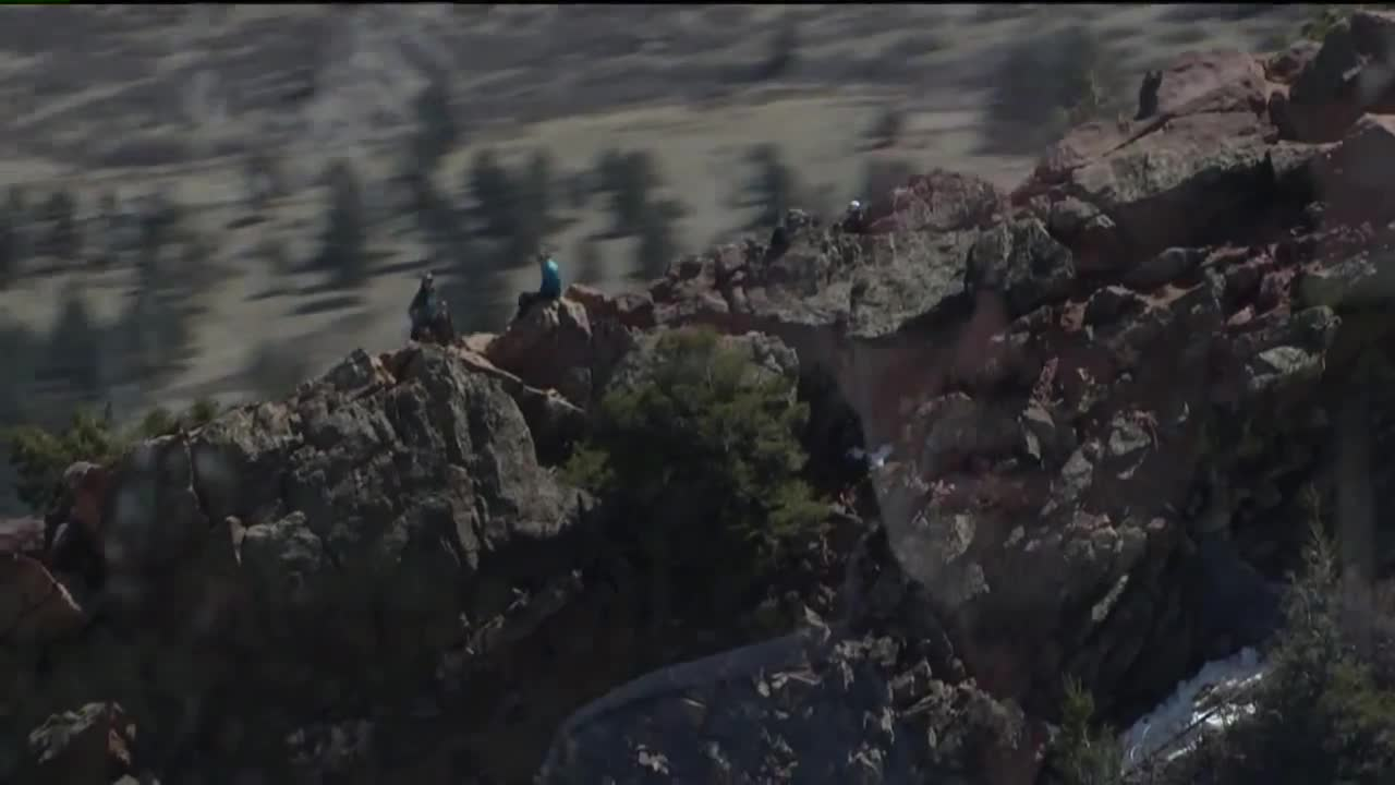 Rock Climber Rescued After Falling 70 Feet