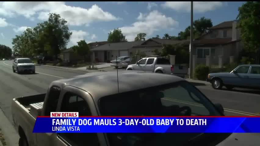 3-Day-Old Baby Mauled to Death by Family Dog