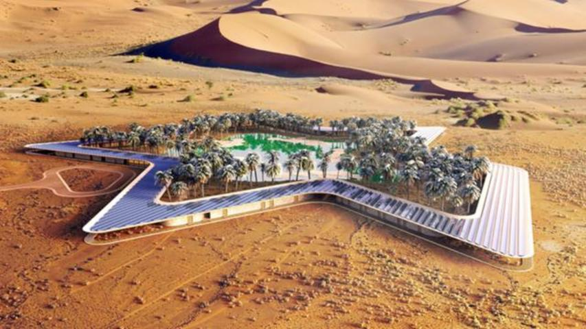 This Stunning Oasis In Middle Of Desert Is What Dreams Are Made Of