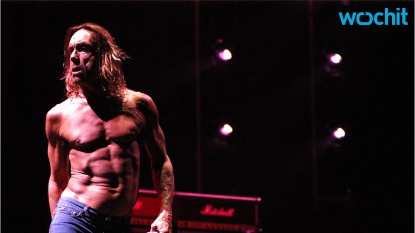 New Book Will Tell The Story Of Iggy Pop and the Stooges