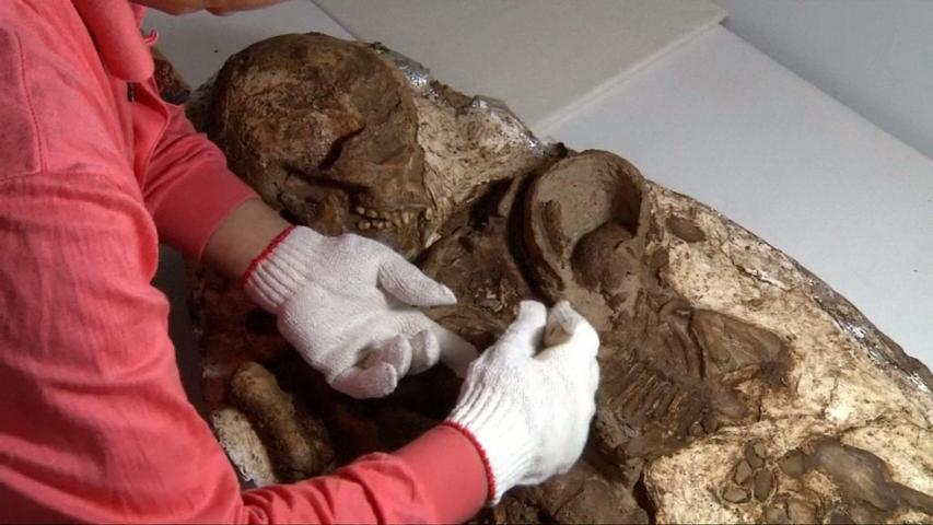 Archaeologists Find 4,800 Year Old Mother & Child Fossil