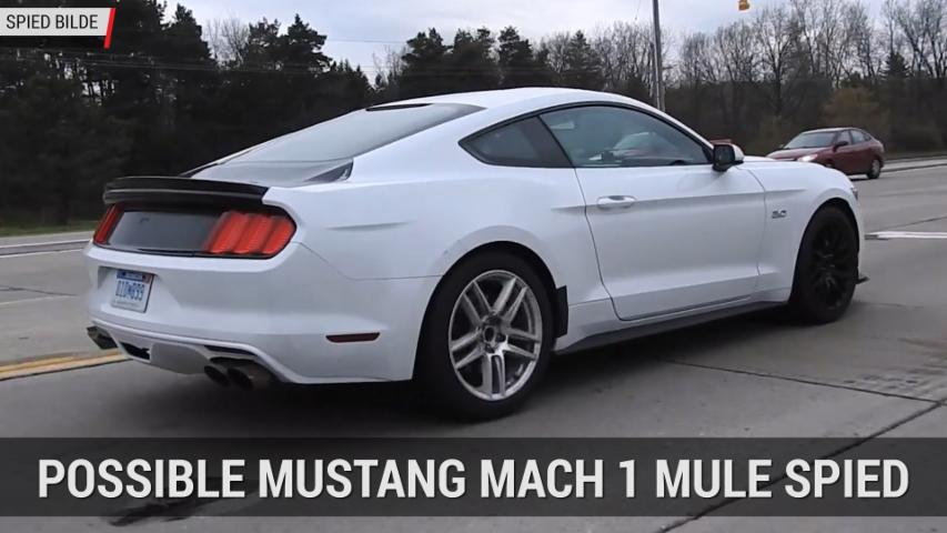 Ford Mustang Mach 1 Mule Spied | Autoblog Mintue