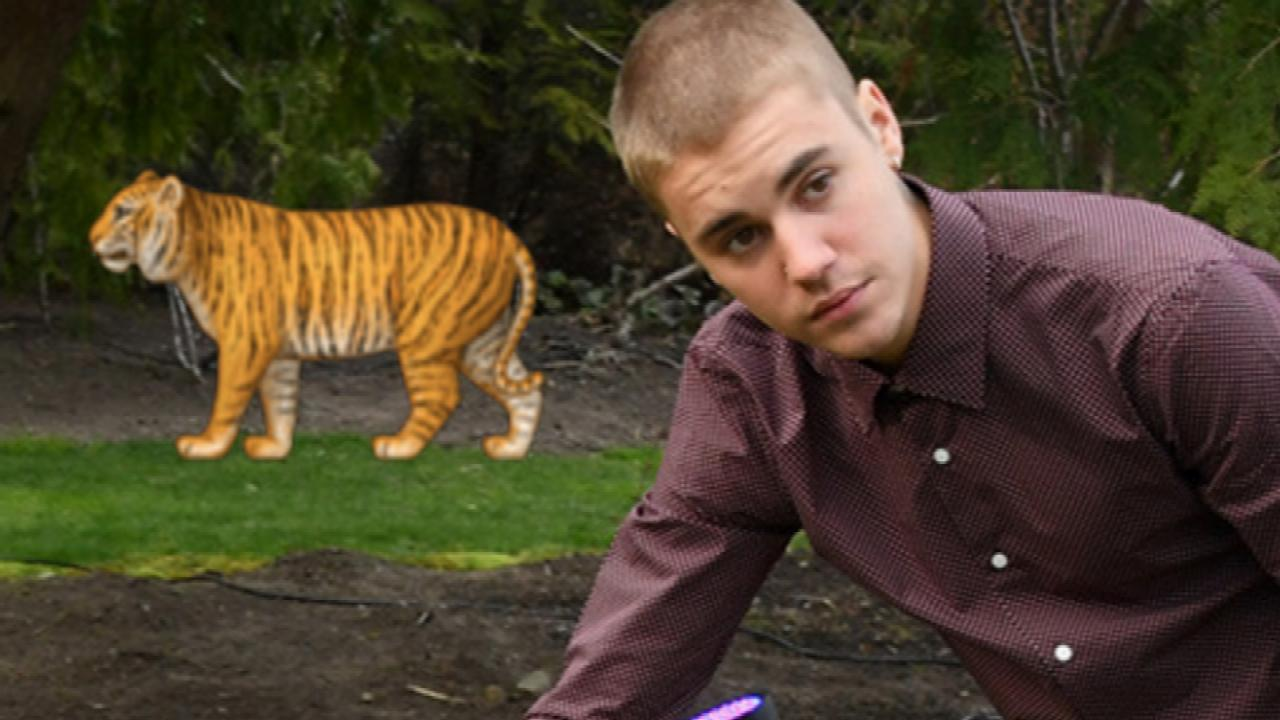 Justin Bieber Poses with Tiger and it Gets Emojified