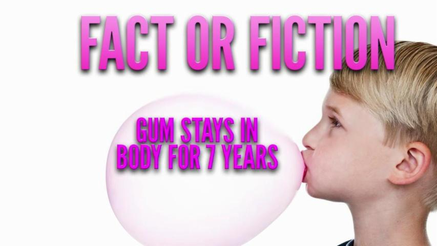 Does gum really stay in your stomach for 7 years?