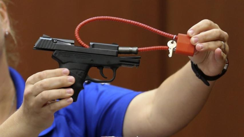 George Zimmerman Says He Got $250K for Gun That Shot Trayvon Martin