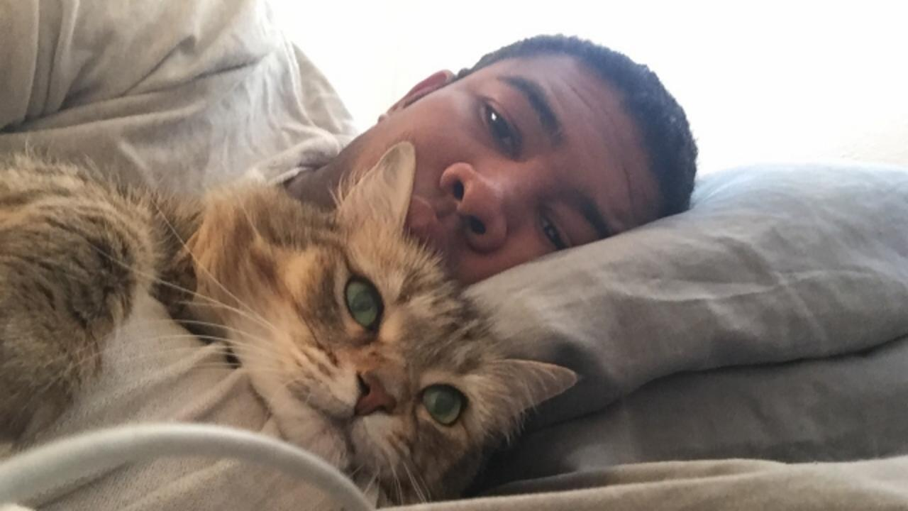 Why a Prominent Saudi Cleric Frowns Upon Cat Selfies