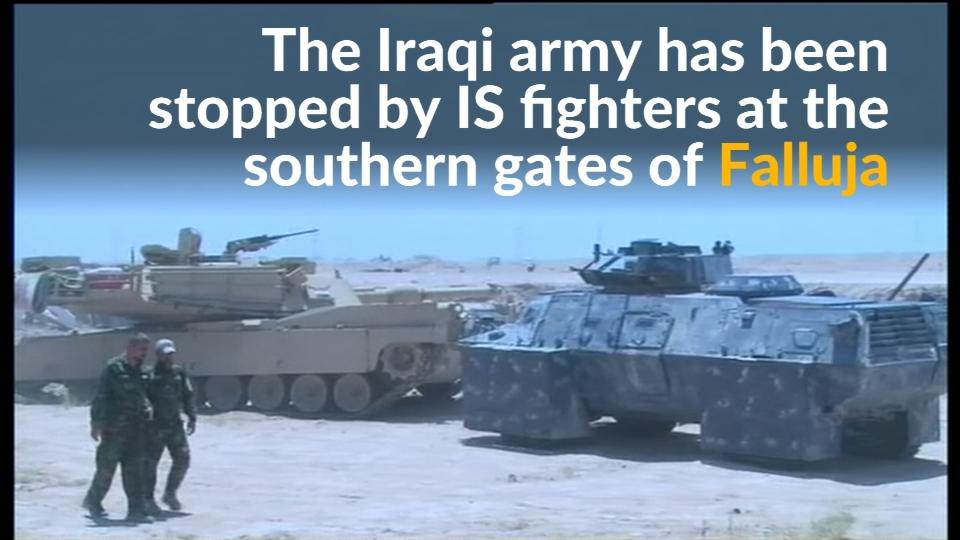 Iraqi army halted by Islamic State outside Falluja