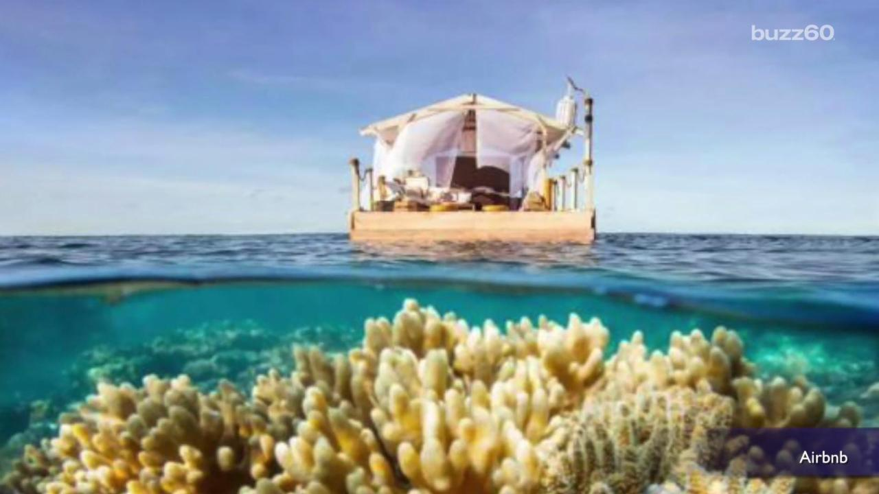 Airbnb Contest Offers Night at Floating Bedroom in Great Barrier Reef