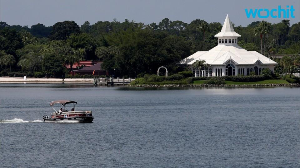 Disney Resort Gator Death Deemed 'Not Criminal'