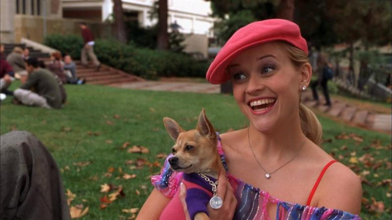 Reese Witherspoon Celebrates 15 Years Since Legally Blonde