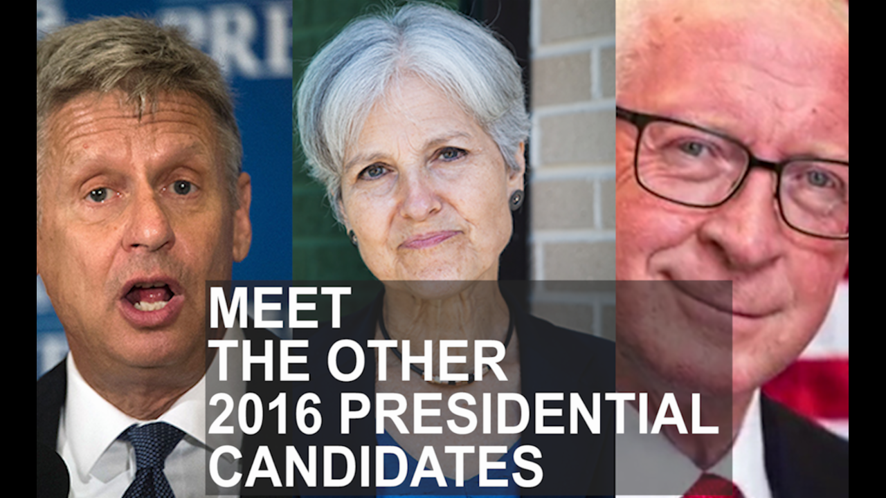 Meet the other candidates on the 2016 presidential ticket