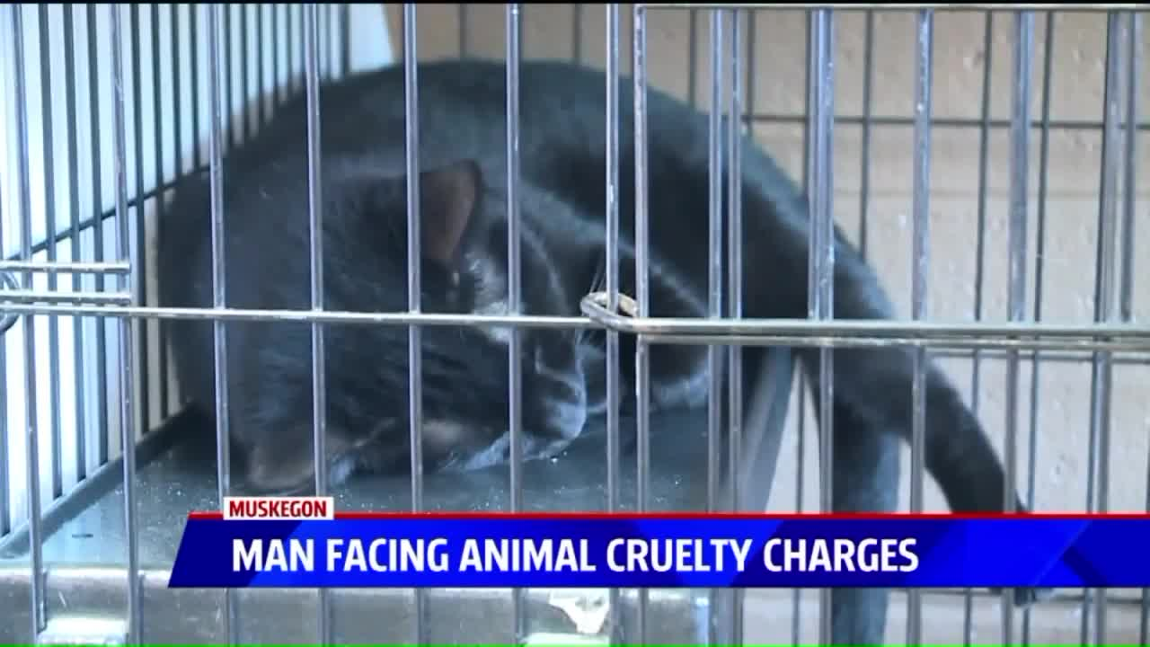 Homeowner Faces Animal Cruelty Charges After Gruesome Discovery