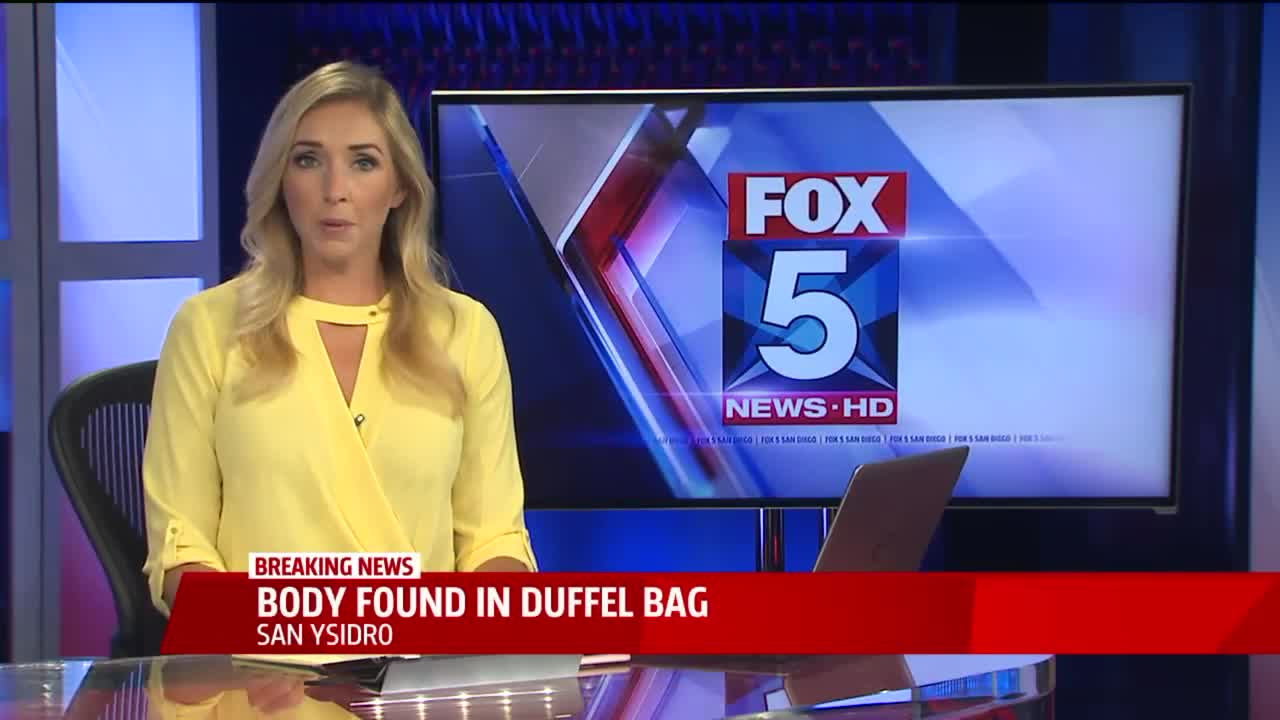 Child's Body Found in Bag During Border Inspection