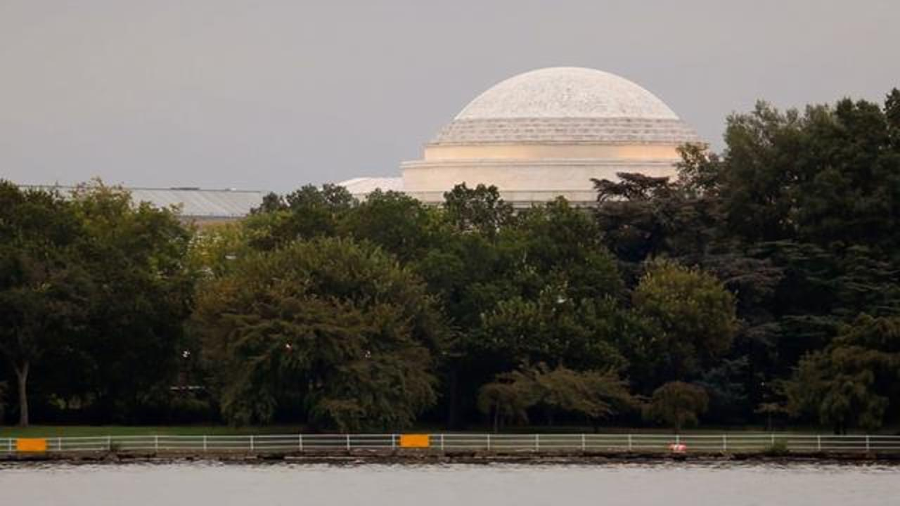 Strange Slime Covering Parts Of Jefferson Memorial