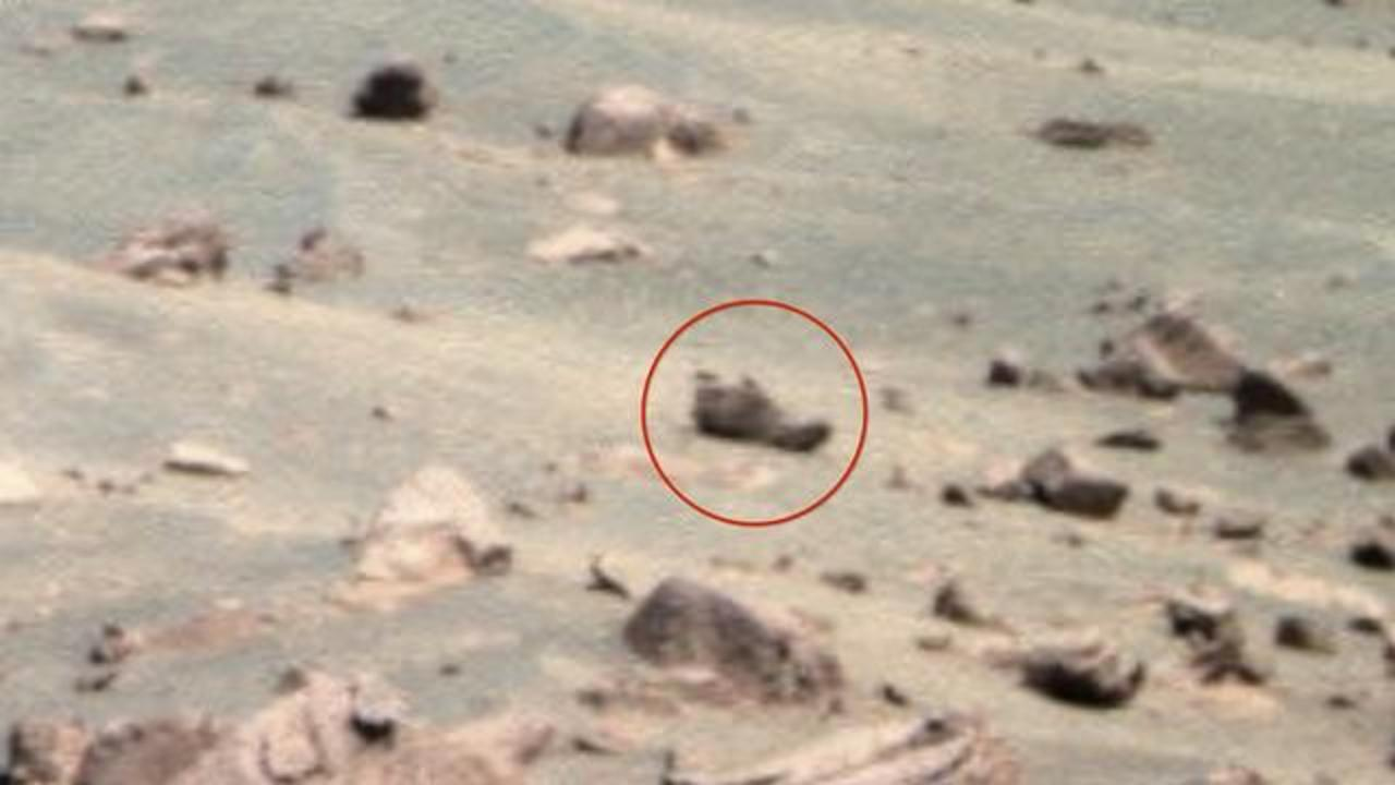 Someone Apparently Left Their Shoe On Mars