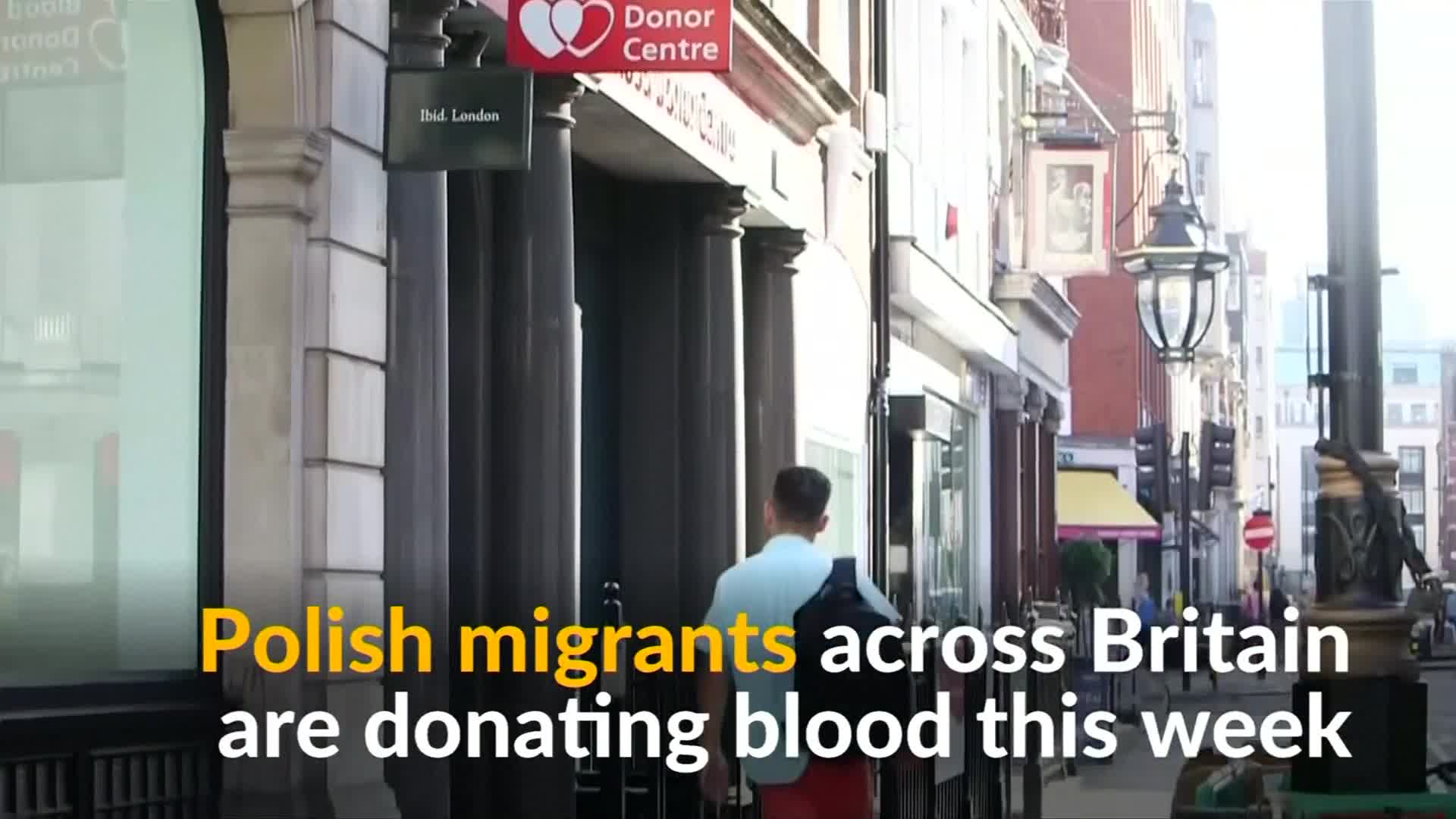 Britain's Polish migrants give blood for unity