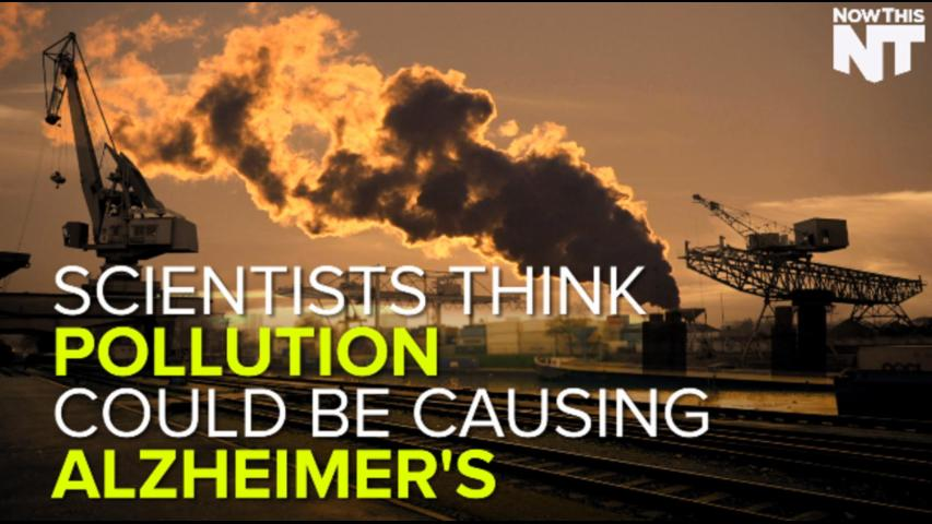Possible Link Between Air Pollution and Alzheimer's