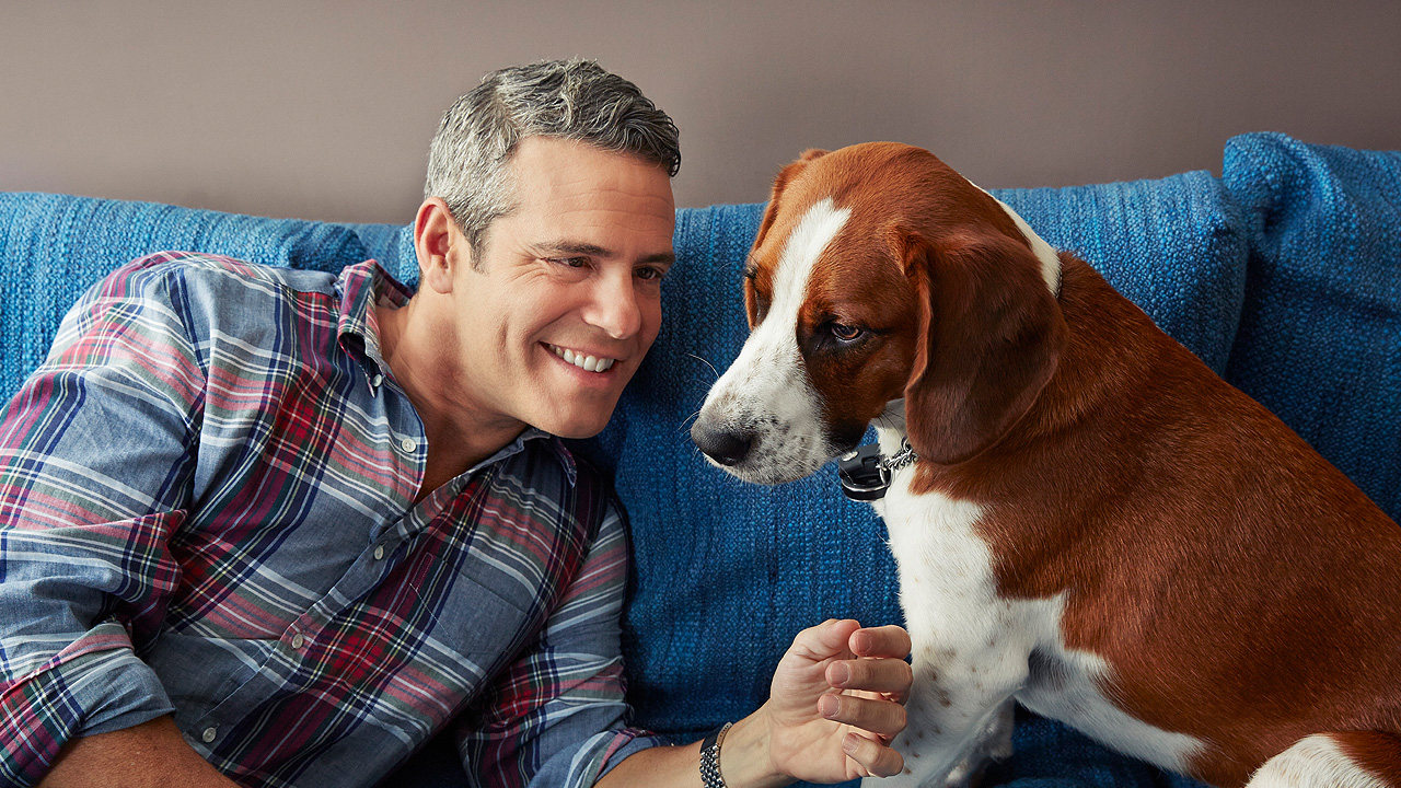 Andy Cohen's Dog Wacha Interviews Him