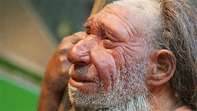 New Study Links Neanderthal DNA to Modern Diseases