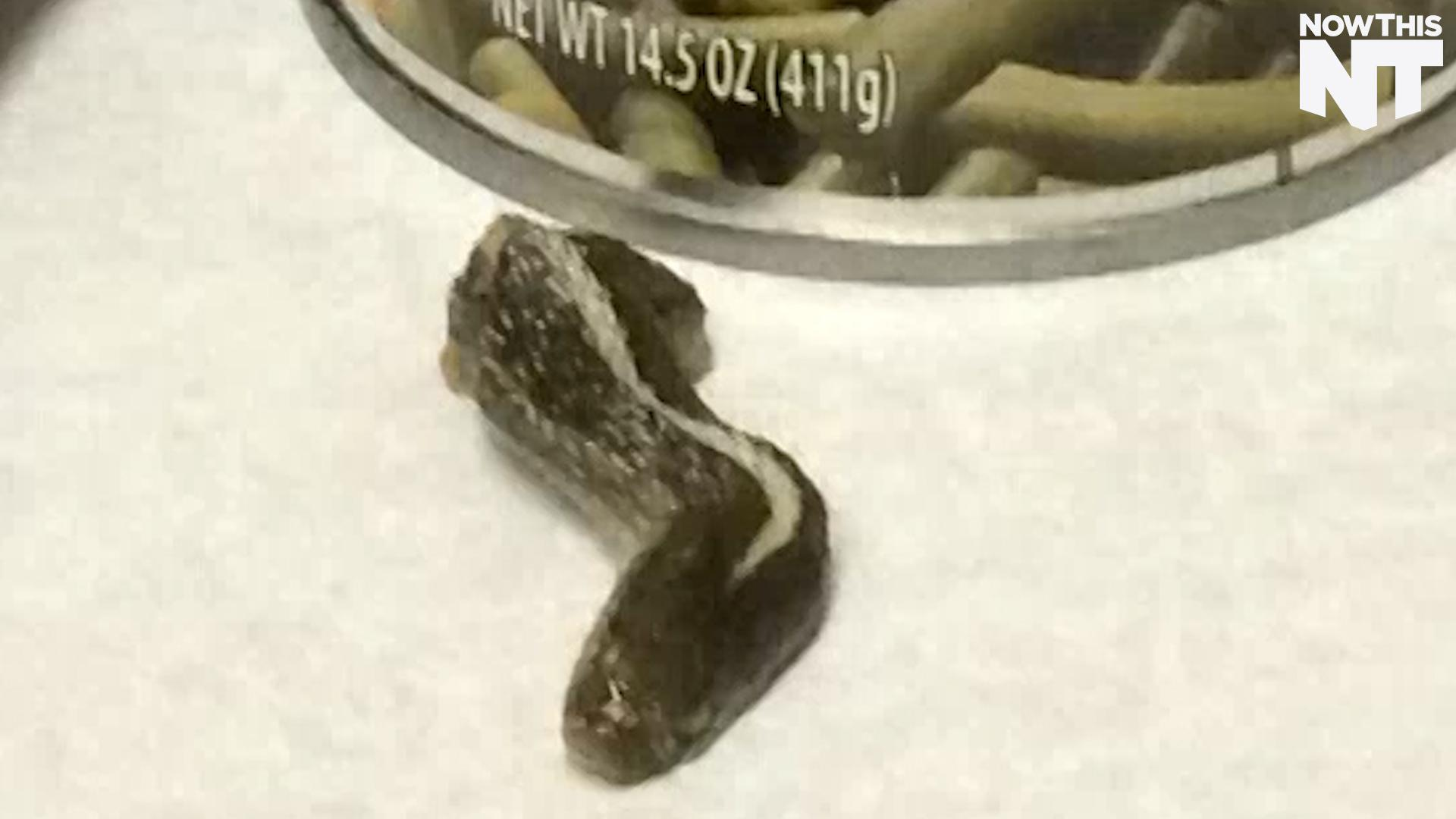 A Snake Head Was Found In A Can Of Beans