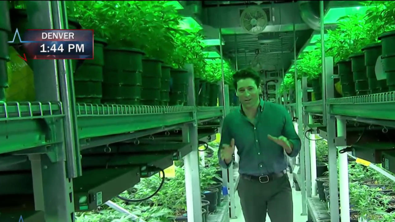 CO Marijuana Industry Talks 2016 Race