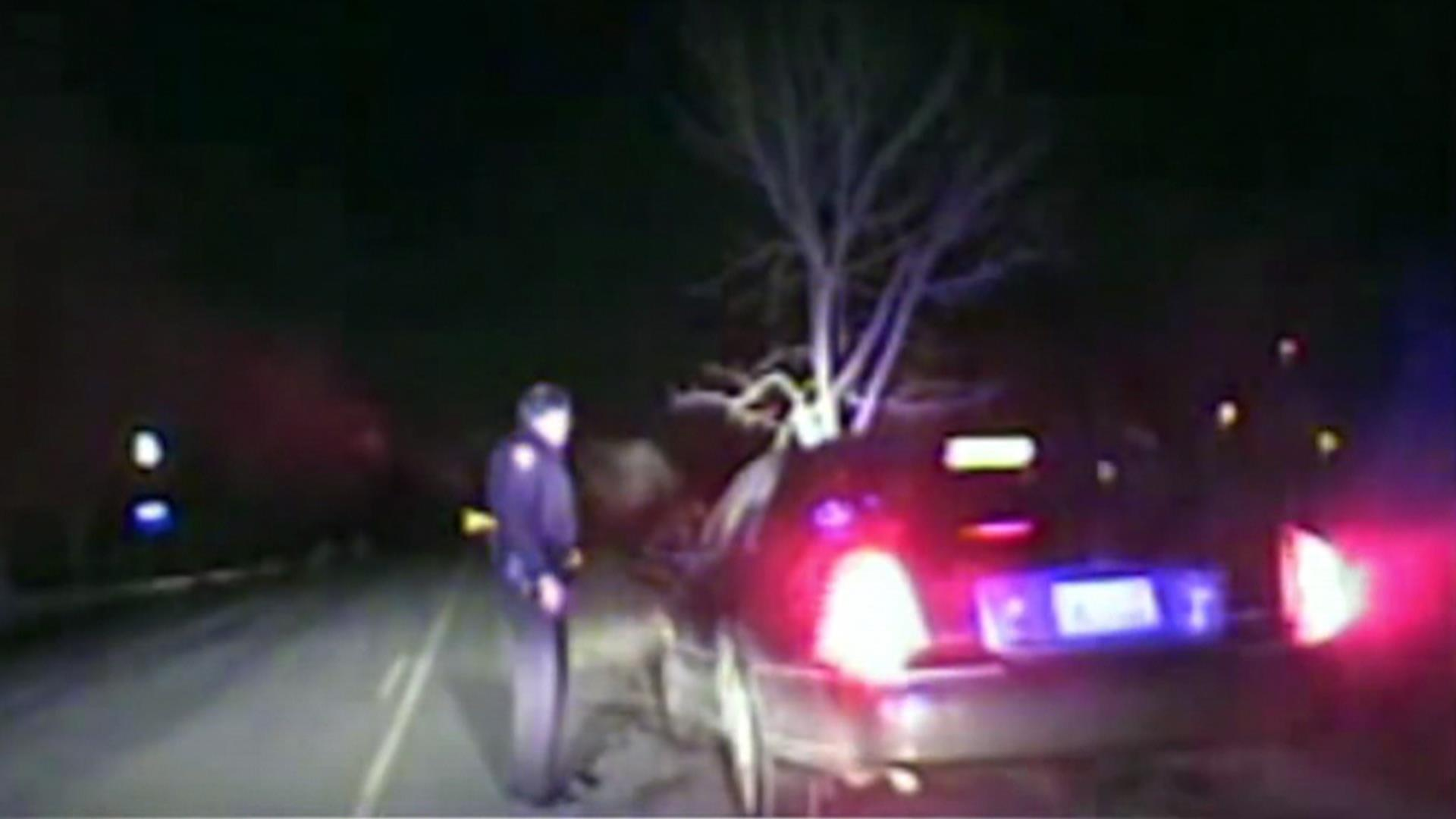 Cops Stop DUI Driver With Tree Stuck in Front Grill