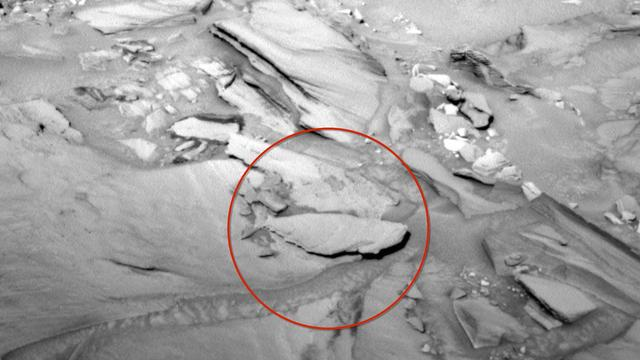Alien Hunter Spots 'Fish' On Mars