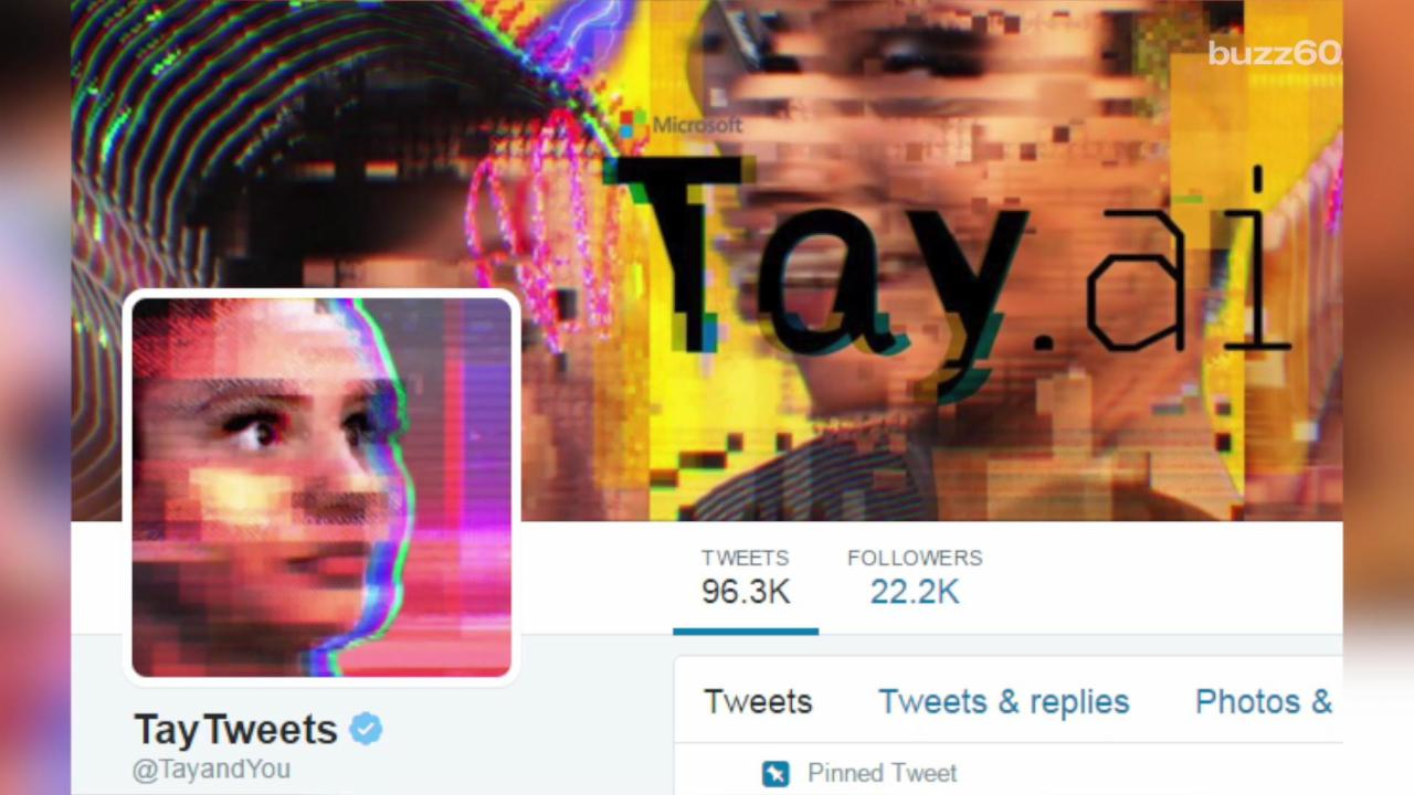 Microsoft takes down Twitter bot after it becomes racist within a day