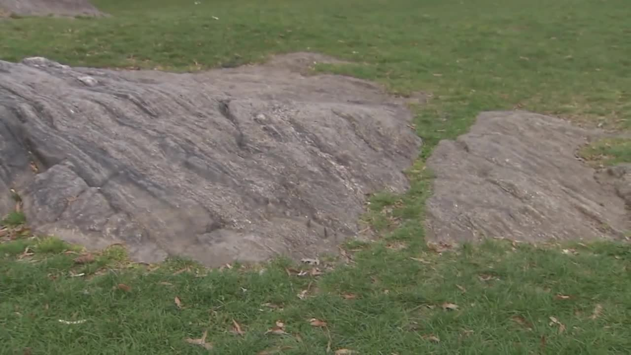 Mysterious Donald Trump Tombstone Appears in Central Park