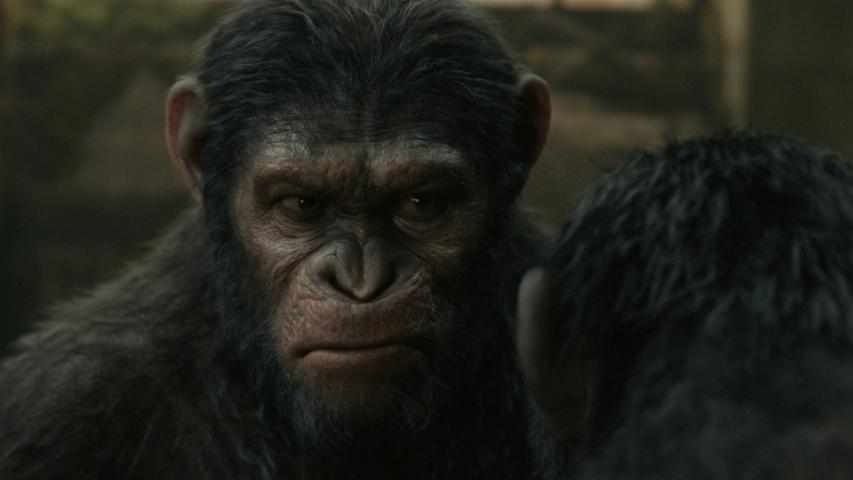 """Dawn of The Planet of The Apes"" Trailer"