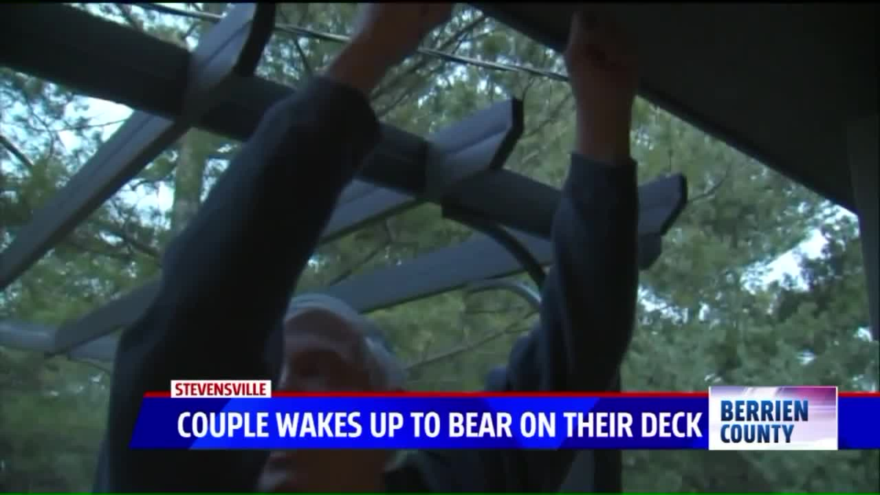 Couple Wakes Up to 400-Pound Bear on Their Deck