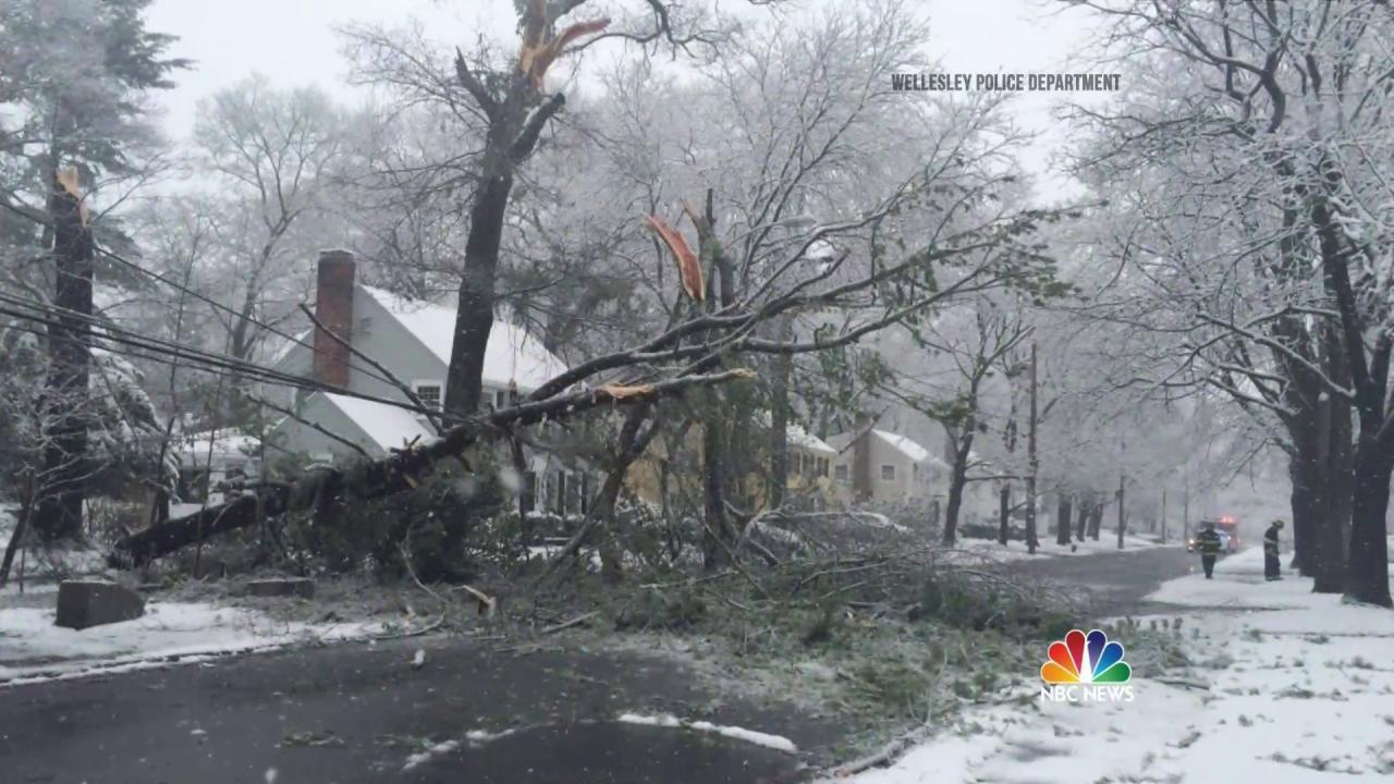 April Freeze: Storm Brings Snow, Severe Winds Across U.S.