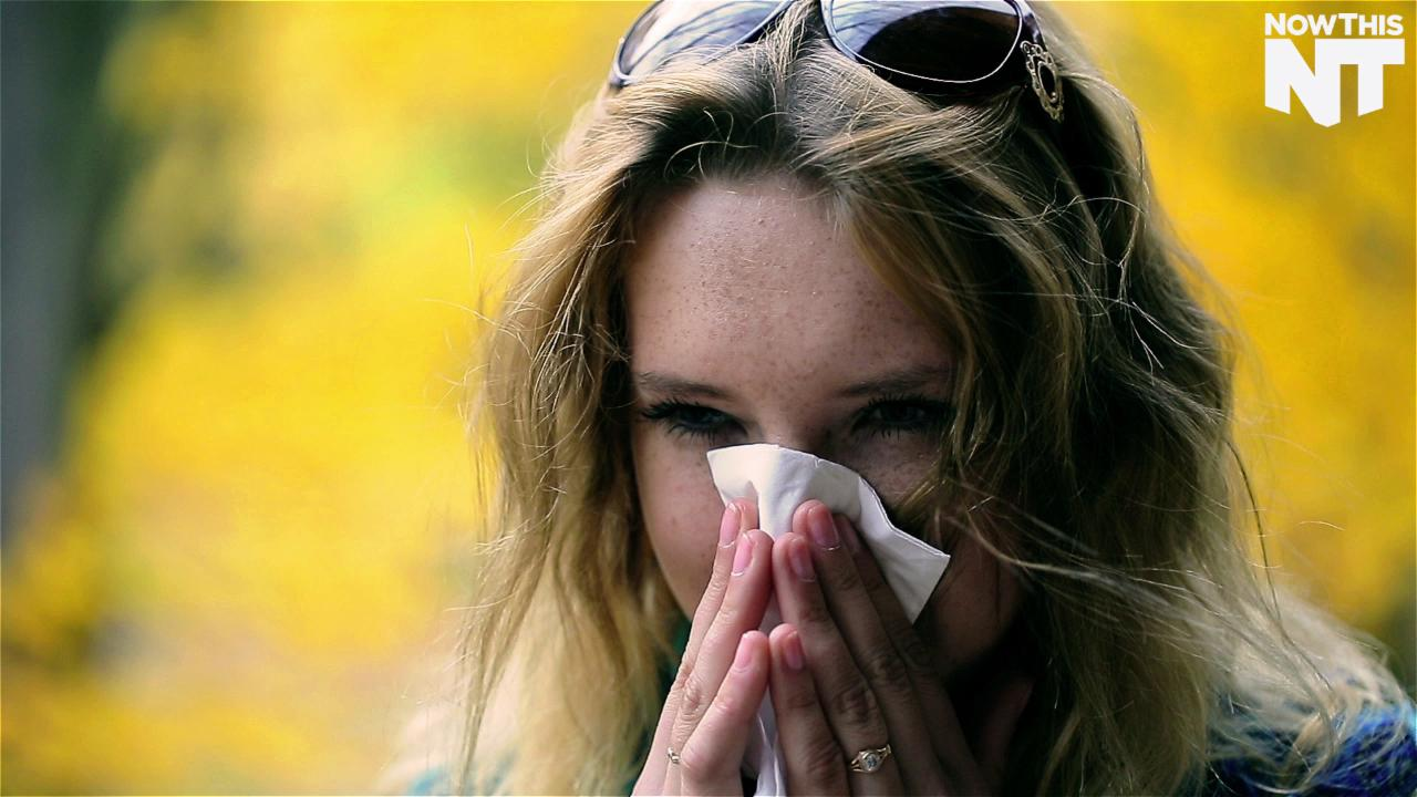 Climate Change Makes Your Allergies Worse