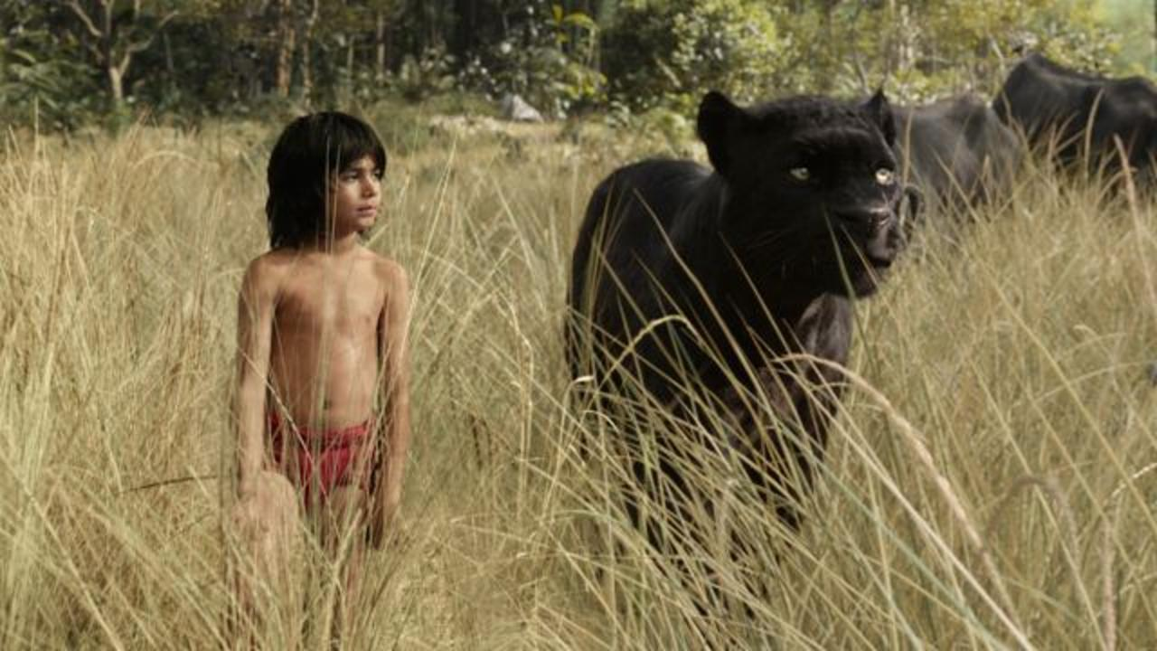 Box Office Top 3: 'Jungle Book' Earns More Than the Bare Necessities